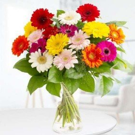 Blumen zum Verschicken - Bunte Gerbera