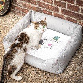 Katzenbett - Ohne Katze ist alles doof