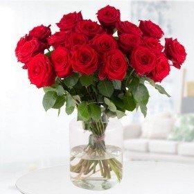 Blumen zum Verschicken - 25 Rosen Red Naomi - 60 cm